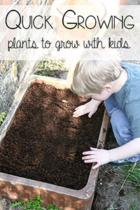 Quick Growing Plants for Kids