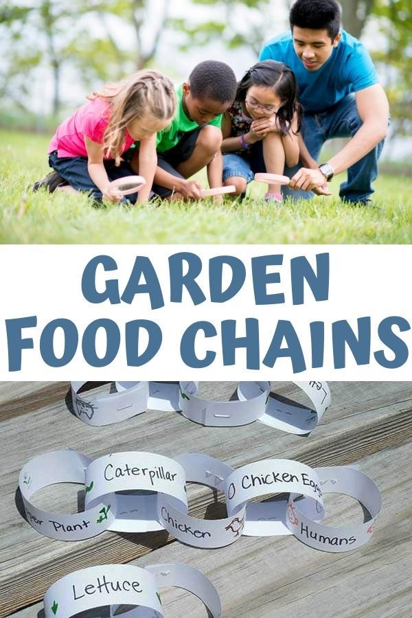 Pinterest image Garden Food Chains