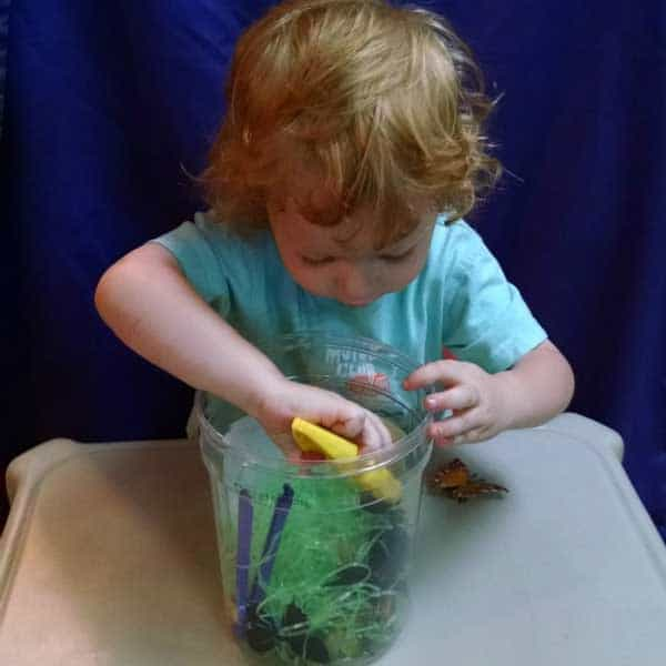 Simple Bug themed sensory bin ideal for toddlers and preschoolers to work on fine motor skills as well as a little bug exploring at the same time.