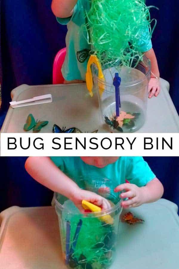 Bug Sensory Bin