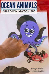 Ocean Animals Shadow Matching