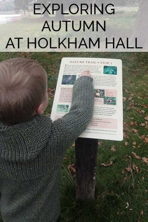 Explore Autumn at Holkham Hall in North Norfolk. See the Fallow Deer in Rutt and explore the nature trails that go around the lake. A perfect autumn family day out in the UK