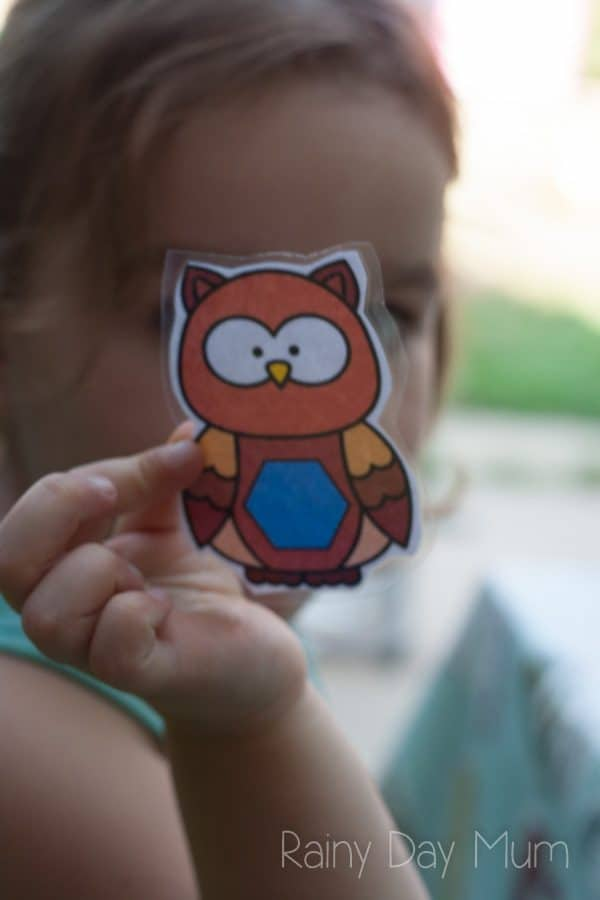 Printable baby owls to use in this hands-on shape activity for preschoolers. Working on colour recognition, 2D Shapes and sorting.