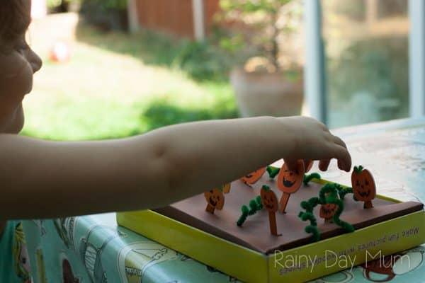 preschooler picking pumpkins from the pumpkin patch