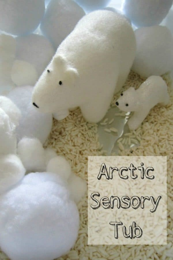 Easy set up arctic sensory tub
