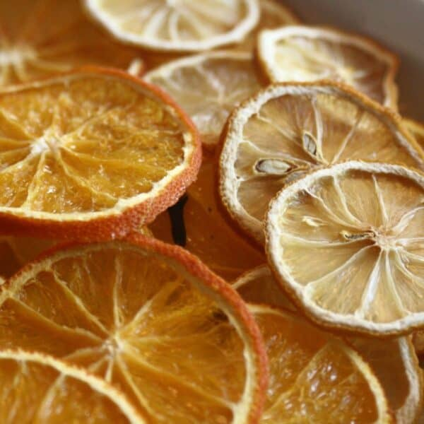 how to dry orange and lemon slices
