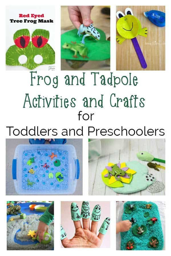 Fun Frog and Tadpole Crafts and Activities for Toddlers and Preschoolers