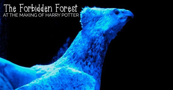 Discover what you and your family can expect this summer with the latest attraction at Warner Bros. Studio Tour London ~ The Forbidden Forest!
