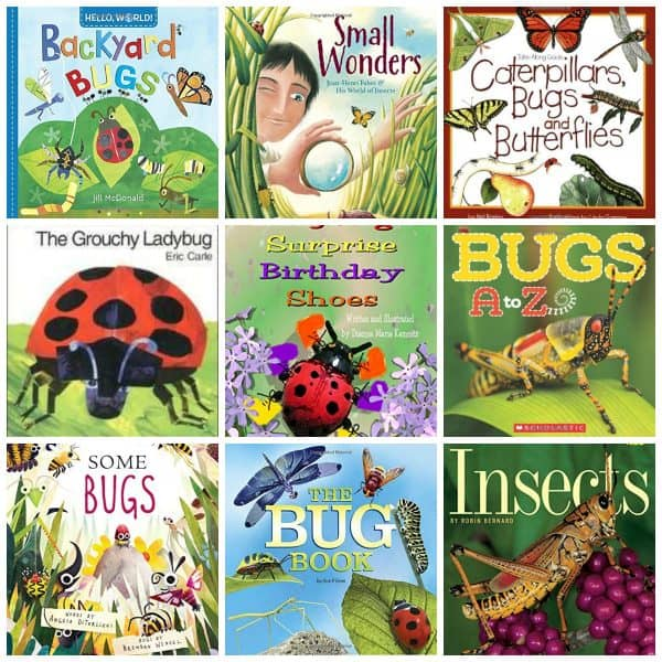 Bugs and Butterfly books for Junior Naturalists