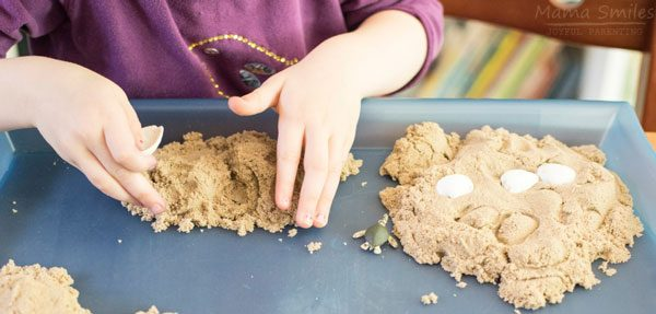 kinetic sand and ocean shells and creatures