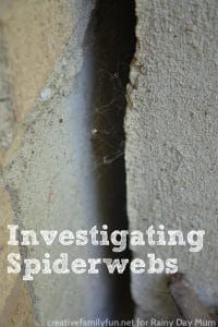 Ideas and learning associated with spiders webs.