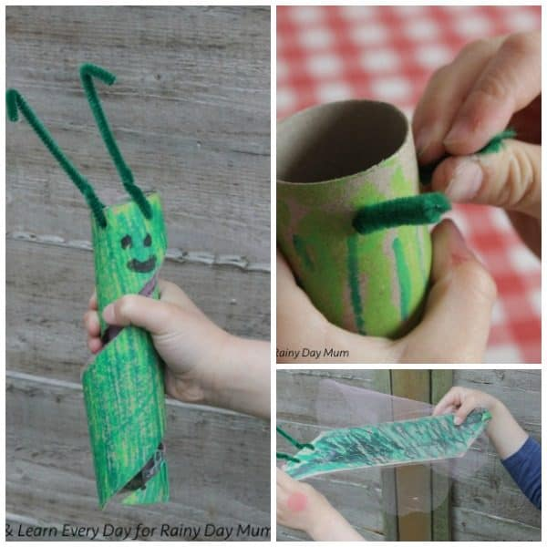 Create this cardboard tube craft that transforms from a caterpillar to a butterfly an ideal project to make with The Very Hungry Caterpillar by Eric Carle.