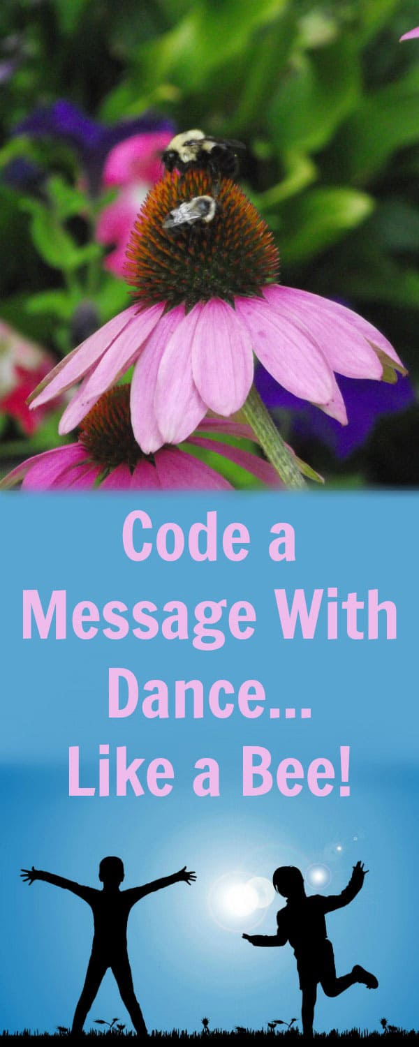 Screen free coding activity for kids based on the communication methods of bees. Code your own dance to get others to follow the directions.