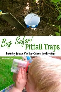 How to make pit fall traps with kids