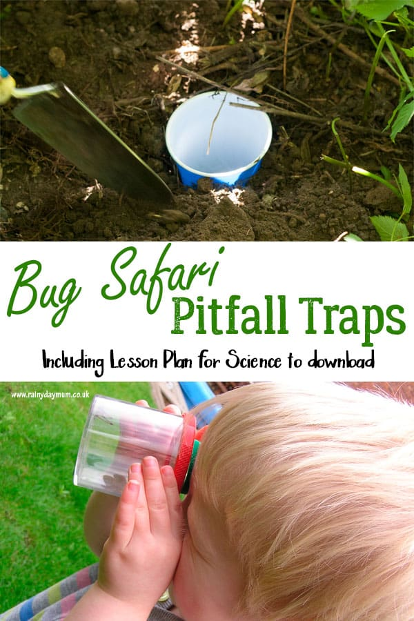 How to Make a Pitfall Trap with Kids