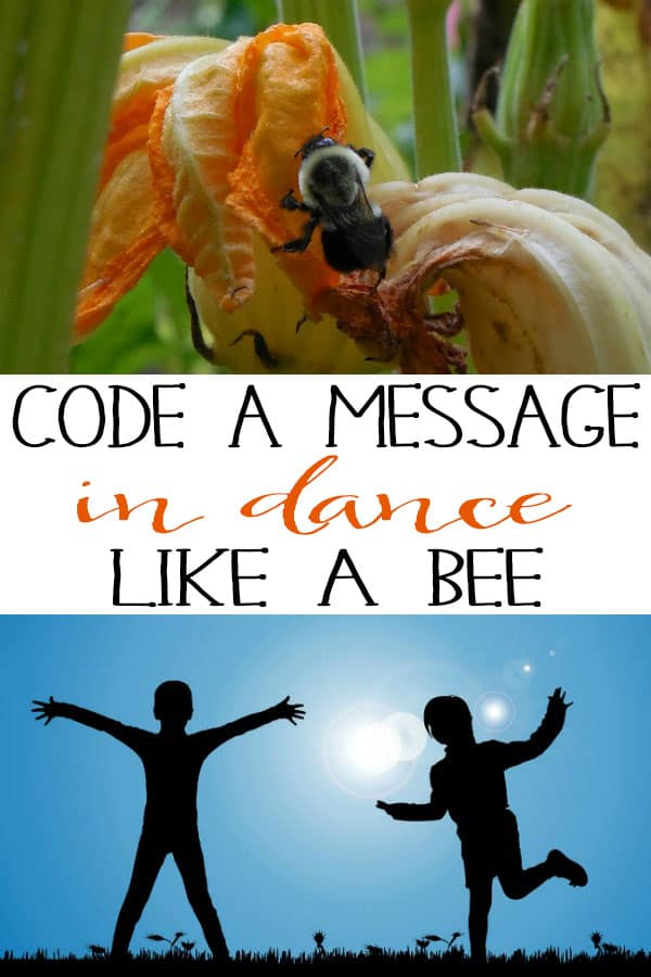 Code a Message in Dance… Like a Bee