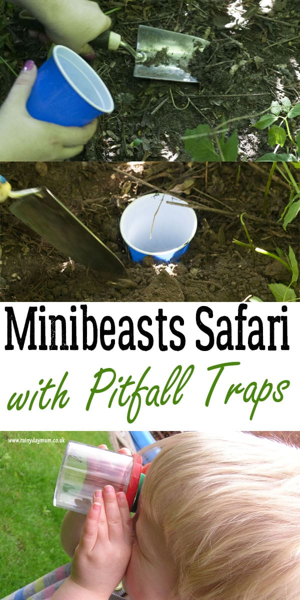 Investigating bugs and creatures with a guide on How to Make Pitfall Traps