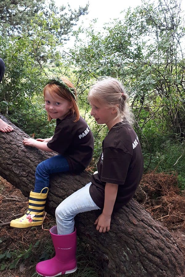 Reclaim your inner child, enjoying activities that you did as an 8-year-old when you head off Camping in the Forest a place to disconnect and reconnect