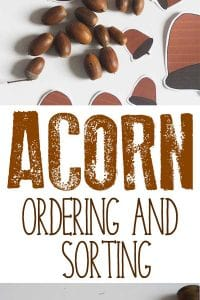 Simple math centre activity using real acorns or download the acorn printable and work on size ordering and sorting with this favourite autumn activity.