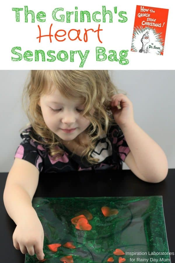 Grinch Heart Sensory Bag