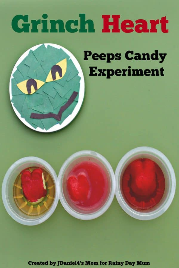 Grinch Heart – Peeps Candy Science Experiment
