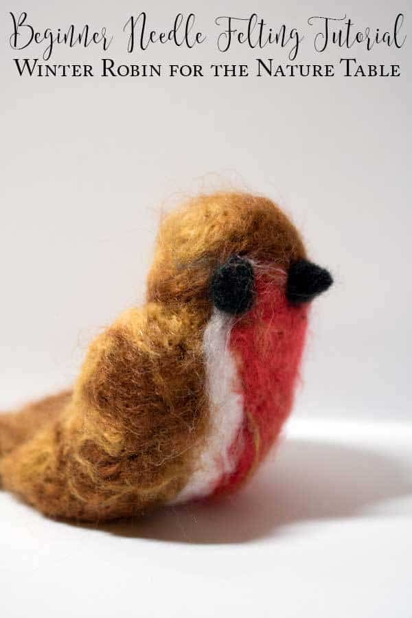 Beginner Needle Felting Project – Winter Robin and The Nature Book Club for Kids