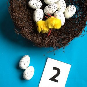 bird nest with artifical eggs in and fluffy chicks the number 2 is below set up as an invitation to learn counting for preschoolers