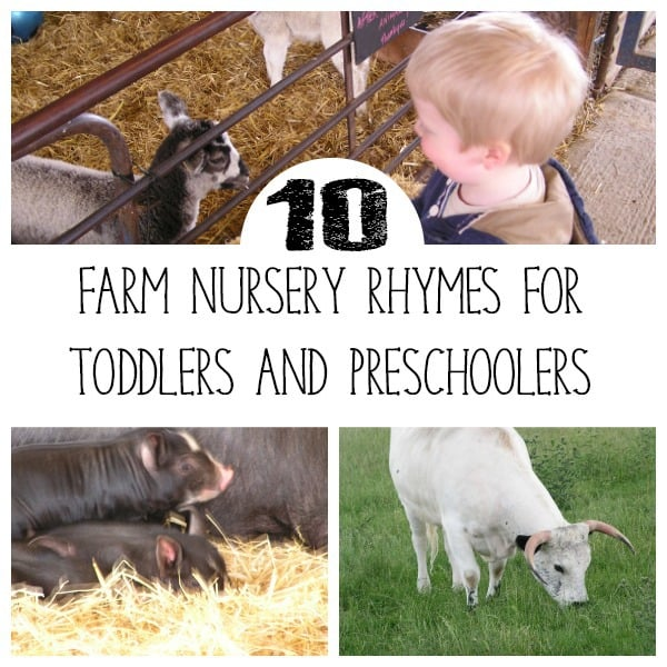 Sing along with these fun farm animal themed nursery rhymes and songs ideal for singing with toddlers and preschoolers. With full lyrics, you can be sure to remember these and try them out next time you head to the farm with your kids.