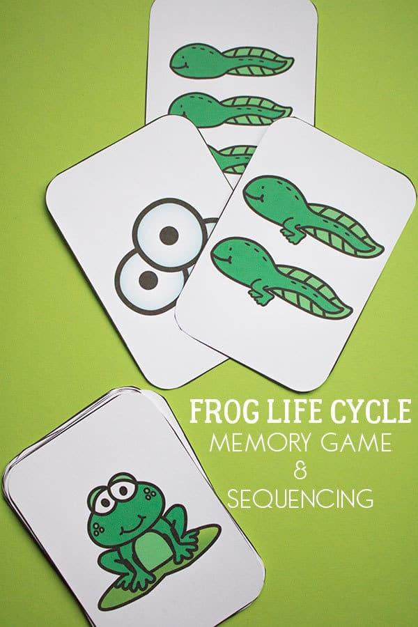 Frog Life Cycle Memory Game