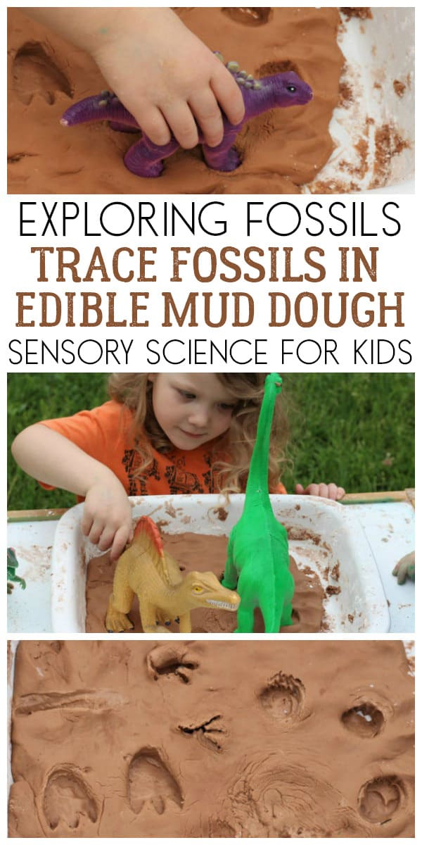 Discover how trace fossils are made with this fun sensory science activity for kids using edible mud dough and dinosaurs.