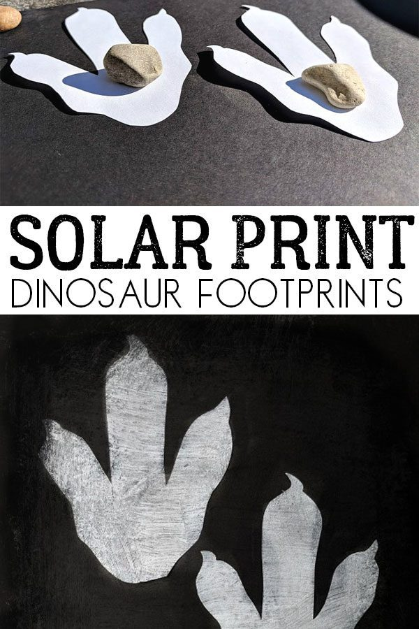 Solar Print Dinosaur Footprints for Kids to Make