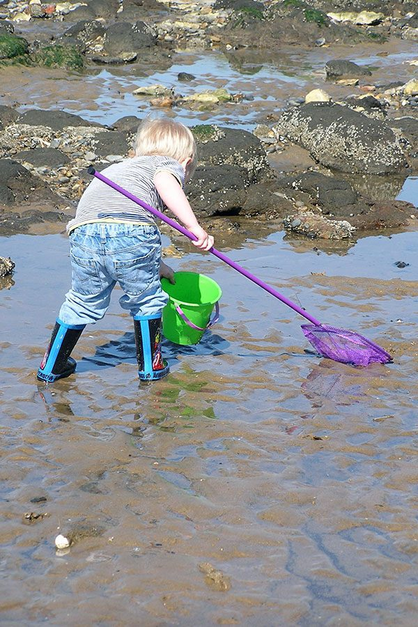 scavenger for kids to do whilst exploring the tide pools at the beach