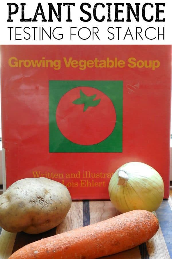 Classic Science Experiment themed for the book Growing Vegetable Soup by Louis Elhert. Test grown vegetables for the presence of starch.