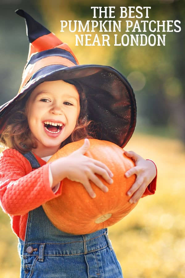 Looking to pick your own pumpkin with the kids this Halloween check out these fantastic farms that offer pick your own within an hour of London.