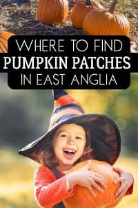 Where to find pumpkin patches to take the kids in Norfolk, Suffolk, Essex and Cambridgeshire to pick their Halloween Pumpkin and a great family day out.