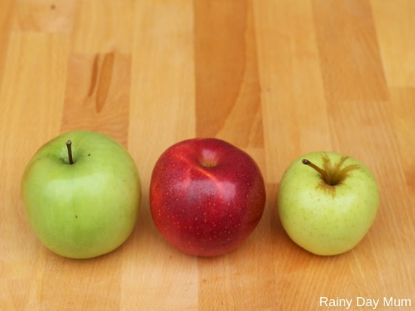 ordering apples by size and features part of a simple apple investigation for preschoolers