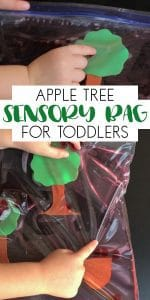 Create your own sensory bag for your toddlers with an Apple Tree Theme and watch them play, as they work on counting and fine motor skills
