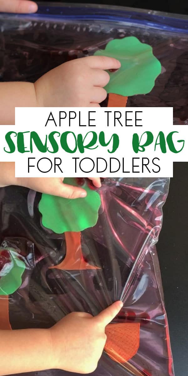 Pinterest Image of Sensory Bag Apple Tree Activity for Toddlers