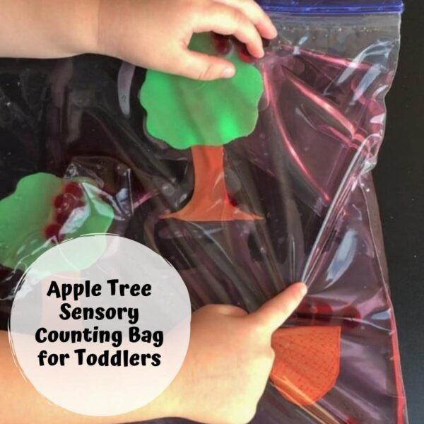 toddler apple tree sensory bag for math