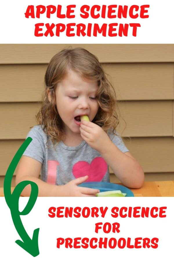Apple Science Experiment Sensory Science for Preshoolers