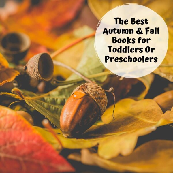 autumn items including colourful leaves acorns and text reading the best autumn and fall books for toddlers or preschoolers