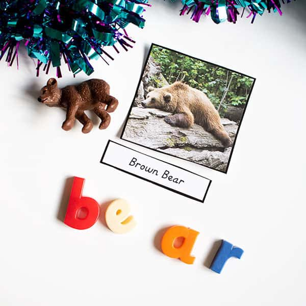 Activity ideas for using the 3 part bear and friends cards inspired by Bear Stays up for Christmas