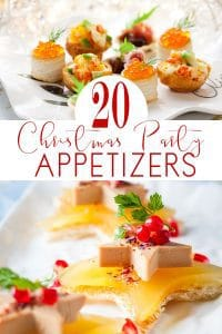 20 Christmas Party Appetizer that every cook can make