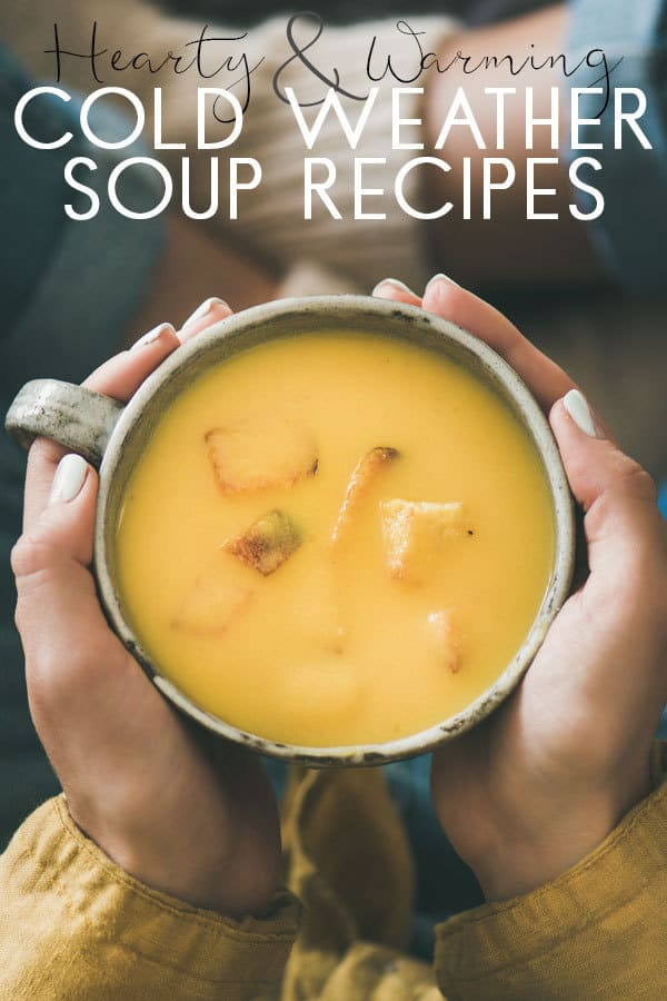 Hearty and warming recipes for rainy day soups that the family will enjoy. See these recipes we have tried and tested in our family kitchen