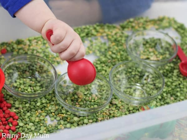 Toddler pouring peas in a sensory bin inspired by Eric Carle's Very Hungry Caterpillar