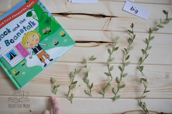 beanstalks ordered for Jack and the beanstalk from smallest to biggest