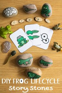 DIY Frog Life Cycle Story Stones and resources for kids to learn