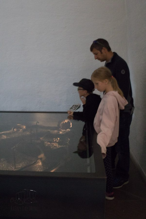 family looking at the women's skeletons buried with one of the ship in the Viking Musem Oslo
