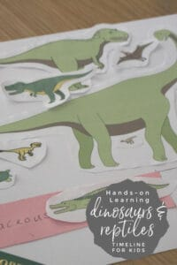 Hands-on Learning Dinosaur Timeline