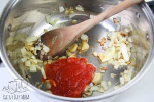 sauteed onions with tomato puree and spices